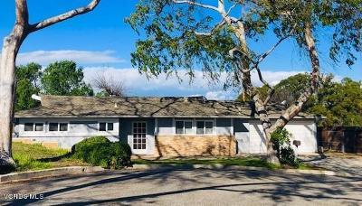 Thousand Oaks Single Family Home For Sale: 727 Calle Cardo