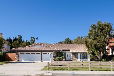 Chatsworth Single Family Home For Sale: 10561 Andora Avenue