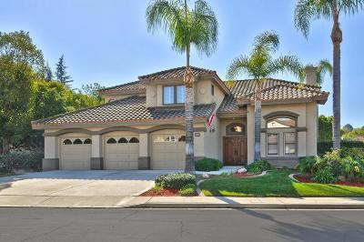 Simi Valley Single Family Home For Sale: 690 Chippendale Avenue