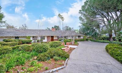 Camarillo Single Family Home For Sale: 420 Valley Vista Drive