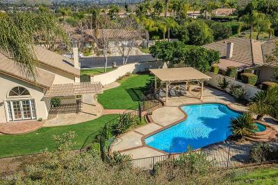 Thousand Oaks Single Family Home For Sale: 1010 Lynnmere Drive