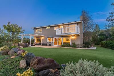 Westlake Village Single Family Home For Sale: 1599 Folkestone Terrace