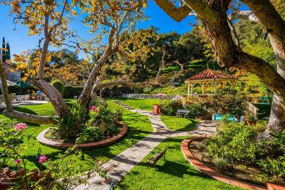 Westlake Village Single Family Home For Sale: 3461 Three Springs Drive