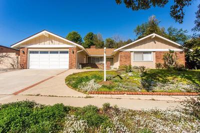 Thousand Oaks Single Family Home For Sale: 1731 Hendrix Avenue