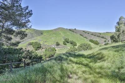 Agoura Hills Residential Lots & Land Active Under Contract: 6015 Lapworth Drive