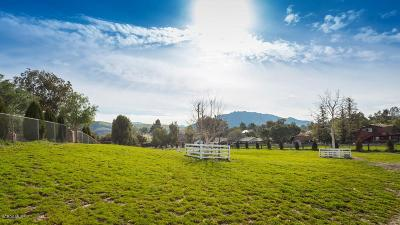 Agoura Hills Residential Lots & Land Active Under Contract: 28433 Driver Avenue