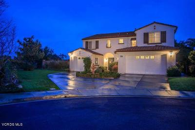 Moorpark Single Family Home Active Under Contract: 4619 Nannyberry Court