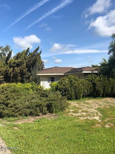Ventura Single Family Home For Sale: 10901 Darling Road