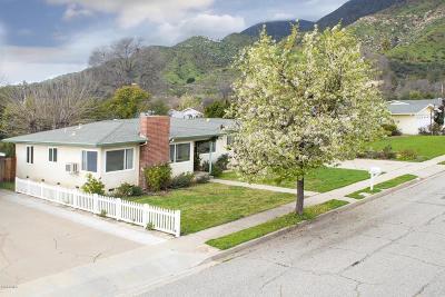 Ojai Single Family Home For Sale: 1101 Mercer Avenue