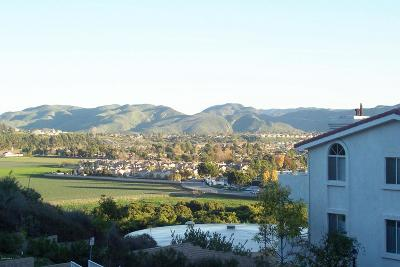 Camarillo Condo/Townhouse For Sale: 2913 Antonio Drive #203