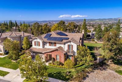 Simi Valley Single Family Home For Sale: 1219 Wetherby Street
