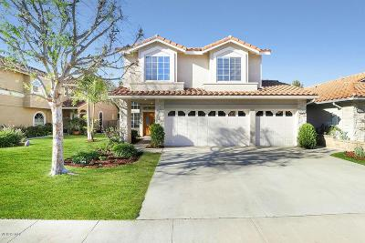 Newbury Park Single Family Home For Sale: 1656 Fox Springs Circle