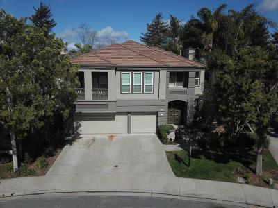 Moorpark Single Family Home For Sale: 11791 Pinedale Road