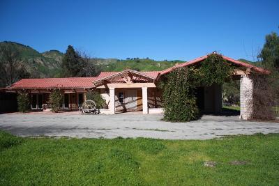 Santa Paula Single Family Home For Sale: 7777 Wheeler Canyon Road