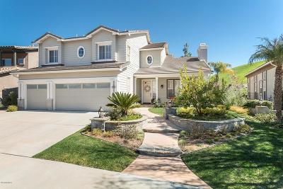 Simi Valley Single Family Home For Sale: 248 Chantilly Circle
