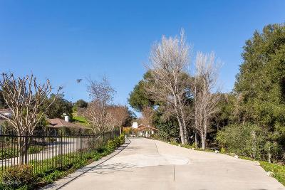 Westlake Village Single Family Home For Sale: 3957 Skelton Canyon Circle
