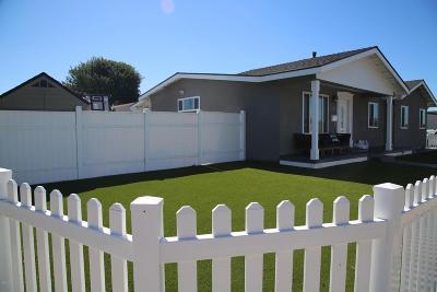 Ventura County Single Family Home For Sale: 1098 Evergreen Lane