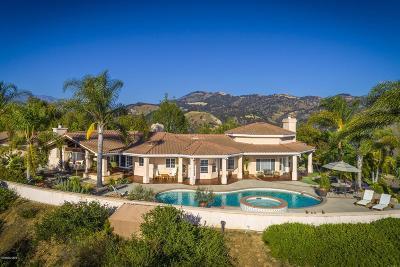 Ventura County Single Family Home For Sale: 10806 Encino Drive