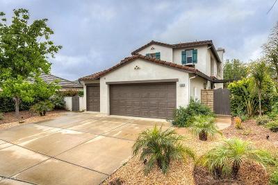 Ventura County Single Family Home For Sale: 121 Via Escondido