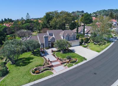Ventura County Single Family Home For Sale: 2197 Paseo Noche