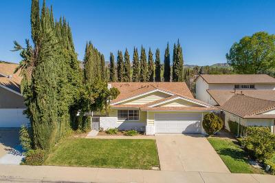 Agoura Hills Single Family Home For Sale: 29341 Hillrise Drive