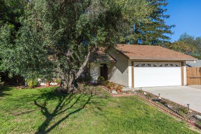 Newbury Park Single Family Home For Sale: 932 Fernhill Avenue