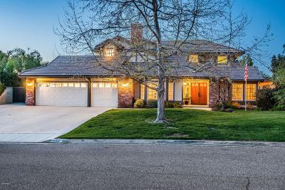 Simi Valley Single Family Home For Sale: 515 Aqueduct Court