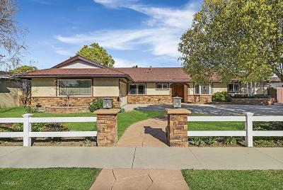 Simi Valley Single Family Home For Sale: 1036 Stanford Drive
