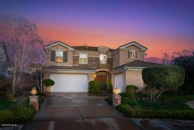 Moorpark Single Family Home For Sale: 4618 Nannyberry Court