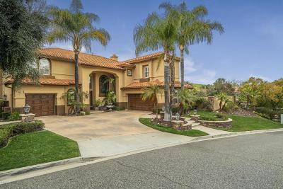 Simi Valley Single Family Home For Sale: 186 High Meadow Street