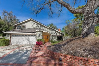Westlake Village Single Family Home For Sale: 802 Raintree Court