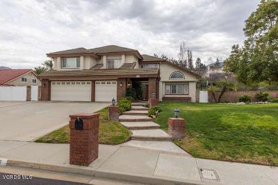 Newbury Park Single Family Home For Sale: 970 Golden Crest Avenue