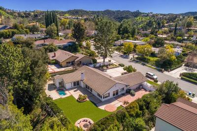Calabasas Single Family Home For Sale: 22451 Calipatria Drive