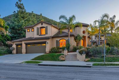 Newbury Park Single Family Home For Sale: 591 Via Cristina
