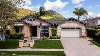 Newbury Park Single Family Home For Sale: 5301 Via Pisa
