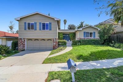 Agoura Hills Single Family Home For Sale: 5644 Lake Lindero Drive