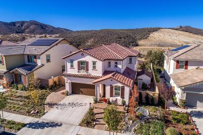 Simi Valley Single Family Home For Sale: 225 Sequoia Avenue