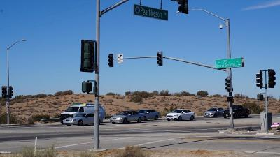 Palmdale Residential Lots & Land For Sale: Pearblossom Hwy/25th Street E
