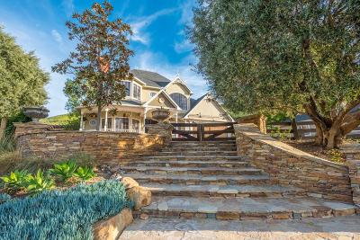 Camarillo Single Family Home For Sale: 1735 Pancho Road