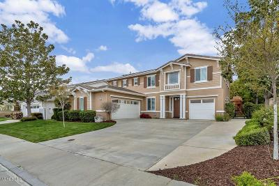 Simi Valley Single Family Home For Sale: 1213 Laurel Fig Drive