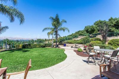 Simi Valley Single Family Home For Sale: 646 North Muirfield Avenue