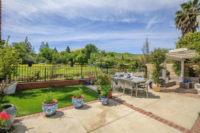 Agoura Hills Single Family Home For Sale: 5863 Cape Horn Drive