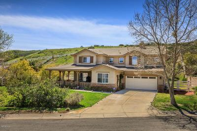Castaic Single Family Home Active Under Contract: 30444 Hidden Valley Court