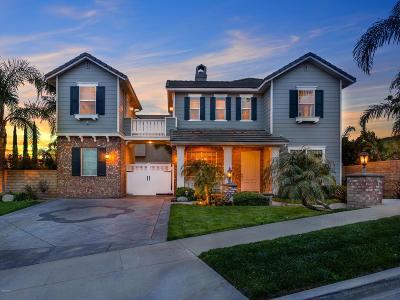 Simi Valley Single Family Home For Sale: 3719 Mandolin Avenue