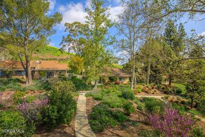 Oak Park Single Family Home For Sale: 121 Conifer Circle