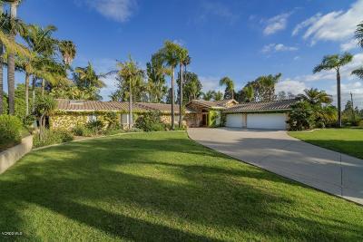 Camarillo Single Family Home For Sale: 1702 Ramona Drive