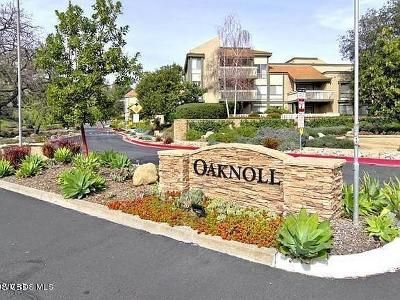 Thousand Oaks Condo/Townhouse Active Under Contract: 290 Sequoia Court #16