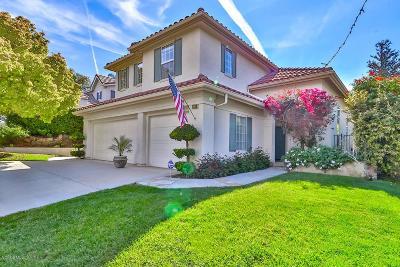 Thousand Oaks Single Family Home For Sale: 2882 Evesham Avenue