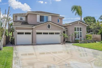 Simi Valley Single Family Home Active Under Contract: 110 Laurel Ridge Drive