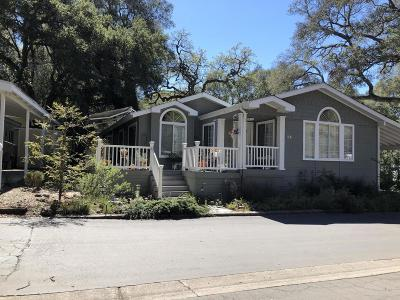 Westlake Village Single Family Home For Sale: 94 Sherwood Drive